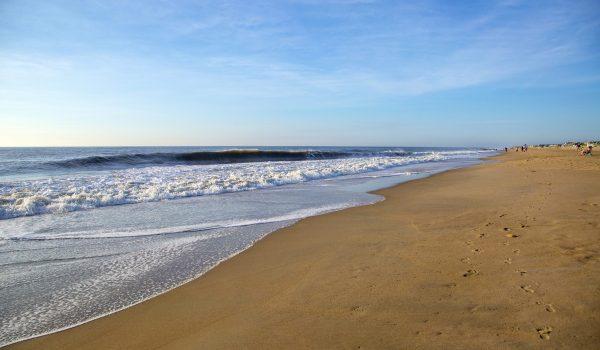 Best Beaches in Delaware